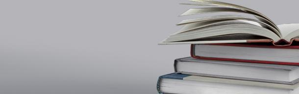 Publikationen >> Buchbeiträge